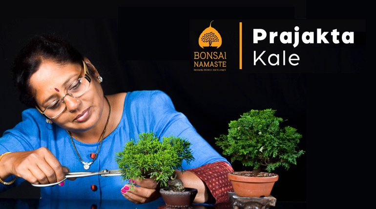 Prajakta Kale – An Incredible Journey of A Bonsai Master